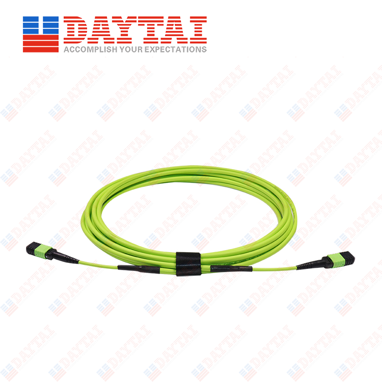 24Core MM OM5 Male to Female MPO Trunk Patch Cord
